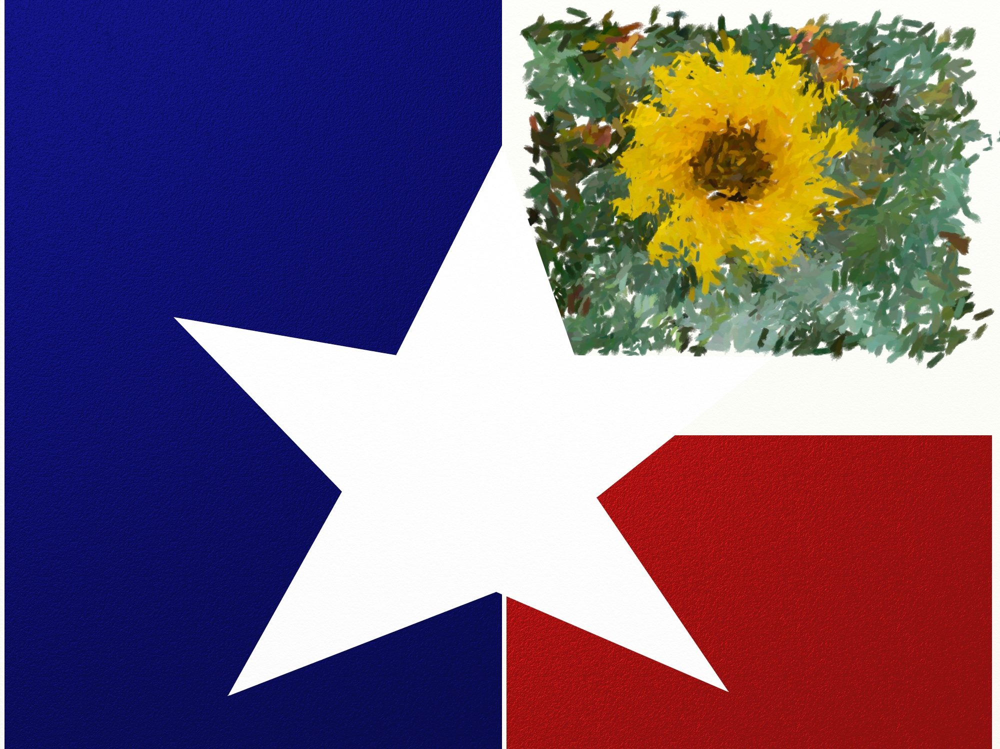 TotallyTexasGifts.com